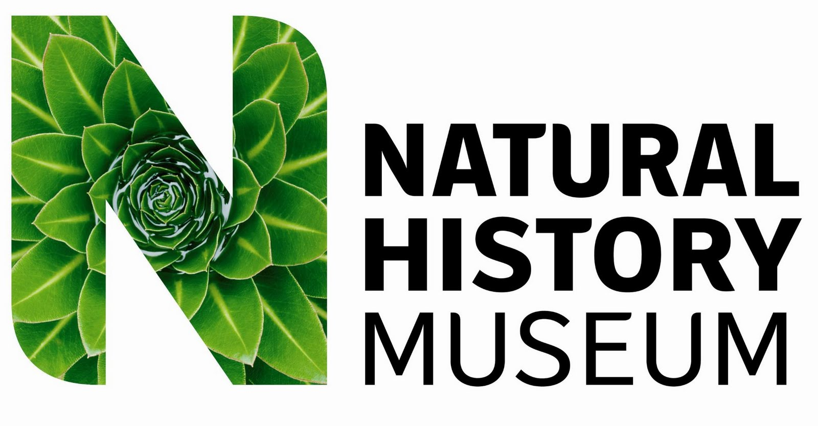 Natural History Museum Events Jobs
