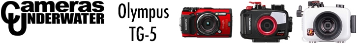 The Olympus TG-5 Banner