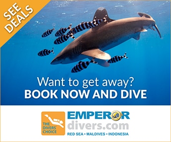 Emperor Divers Red Sea