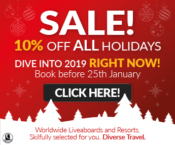 Diverse Travel xmas/new year 2019 travel offers sidebar banner