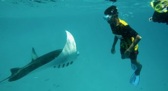 200-students-and-teachers-swam-with-manta-rays-inside-Hanifaru-Bay-as-part-of-the-festival-initiative_Credit_Flossy-Barraud_Manta-Trust.jpeg