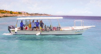 CRF-transplanted-10000th-coral-back-to-the-reef-in-Bonaire.jpg