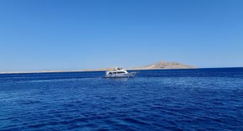 Dive-boat-in-Egypt-credit-The-Reef-World-Foundation.jpg