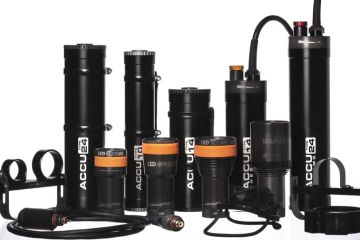 ammonite-glowice-399.jpg