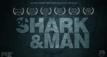 of-shark-and-man-nominated-for-t-1.jpg