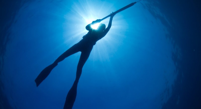 Spearfishing: For and Against