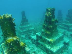 Novel artificial reef project takes root in Grenada