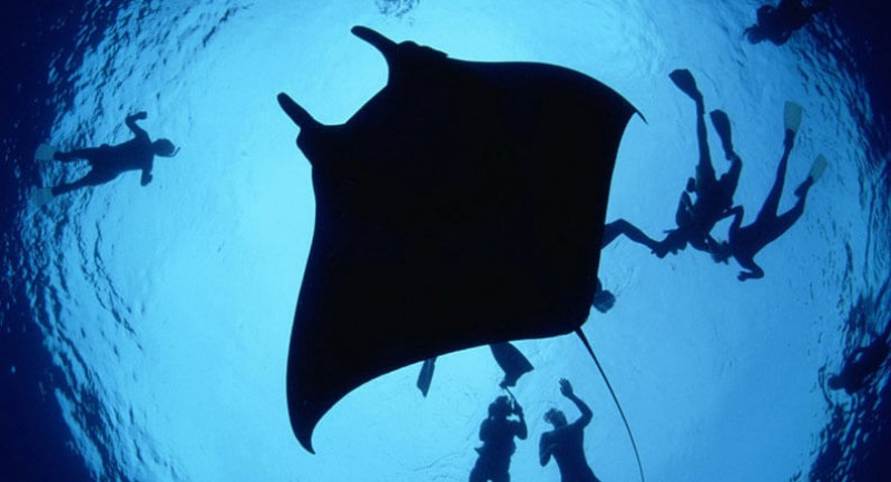 thumbs_diving_snorkeling_location_02-e1458159024974.jpg