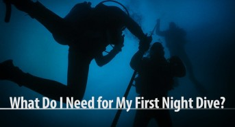 what_do_i_need_for_my_first_night_dive_v2.jpg